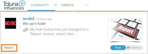 reportbutton_toluna1