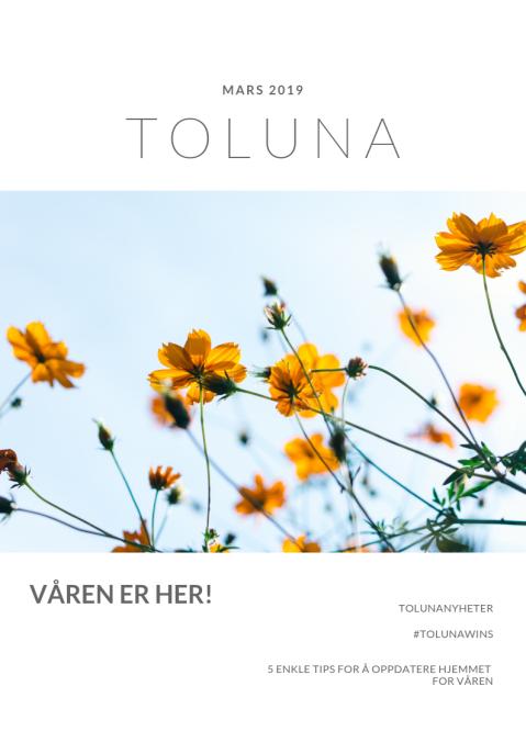 Toluna Tidning NO Mars.png